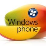 Windows Phone App數量倍增加,但品質未見提昇