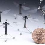 全球首款微型機器昆蟲試飛成功