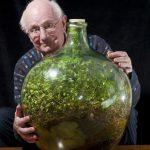 全球最小生態系「瓶中花園」 已與世隔離 53 年