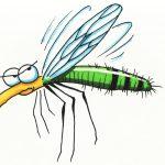夏日防蚊: 含DEET防蚊液仍是實用選項  但需注意使用方法與時效