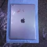 更清楚的 iPad 5 背蓋照片露臉,仍不確定九月十日是否發表