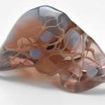 3D列印你的肝臟 或可避免醫療糾紛
