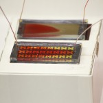 microfluidic chip 微流體晶片