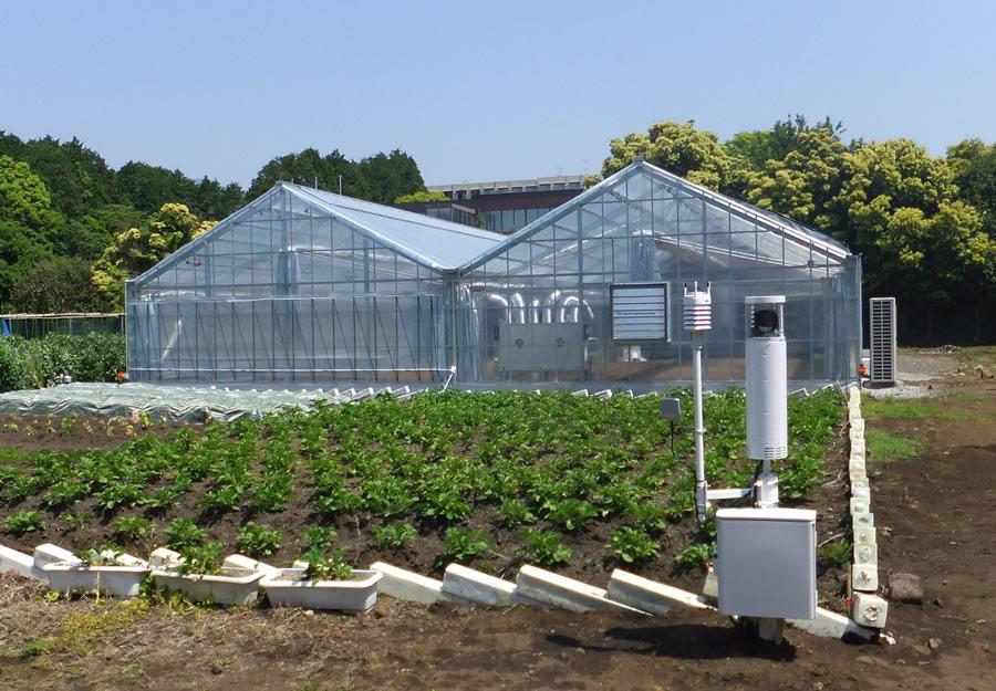 富士通「秋彩」雲端農業軟體服務,轉型「牛步」邁向海外