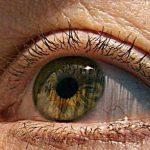 英國科學家利用3D印表機成功複製視網膜細胞