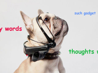 nomorewoof-words-lead_thumbnail