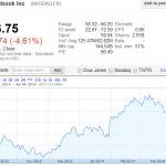 臉書、特斯拉遭熊抱!投機客狂拋 NASDAQ 慘