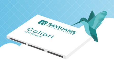 SEQ005-Colibri