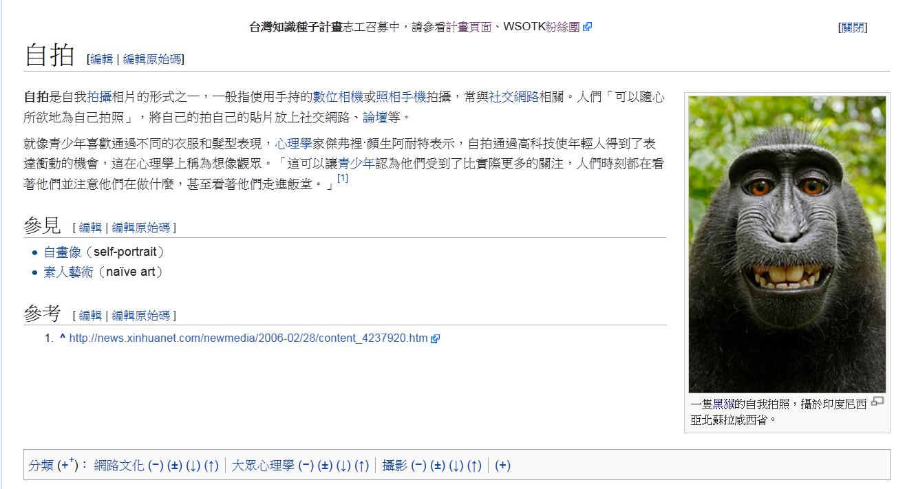 self-portrait-on-chinese-wikipedia