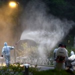 日本境內登革熱疫情爆發,遊客增加惹禍