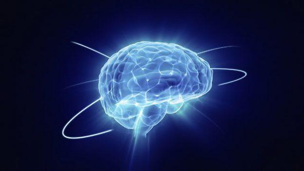 980356-brain