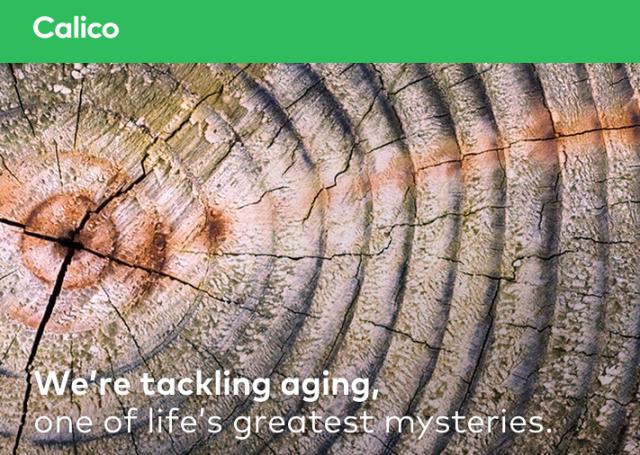 尋找老化秘密,Google 斥資 15 億美元研發抗老化新藥