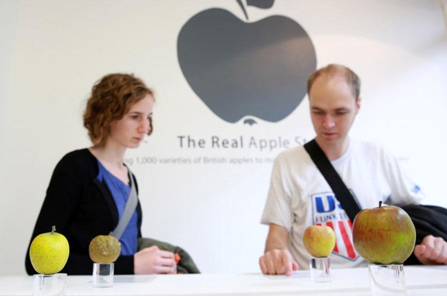 RealAppleStore4