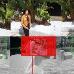 導盲犬 2.0 手機可偵測障礙物並發出警告