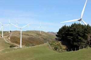 Wind farm  0226
