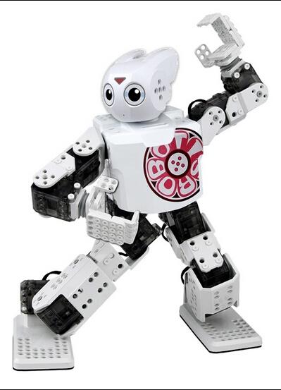 robot 9  549d2f24a9155