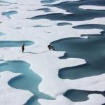 海冰消失加劇,北極冬季海冰最大覆蓋面積創新低!