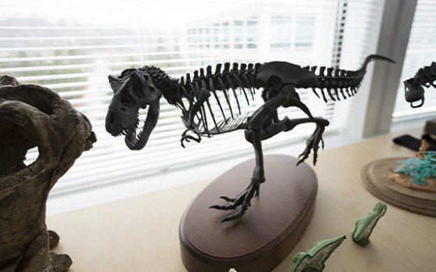 Dino 0309