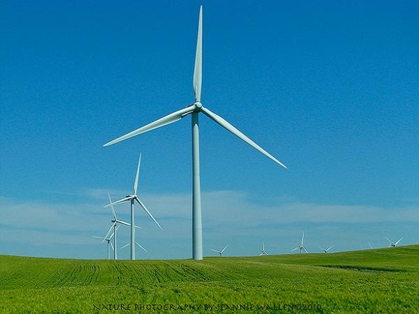 Wind Power_Flickr_NREL0319
