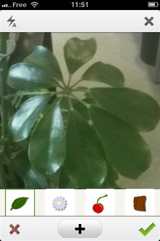 PlantNet_bnext 0505