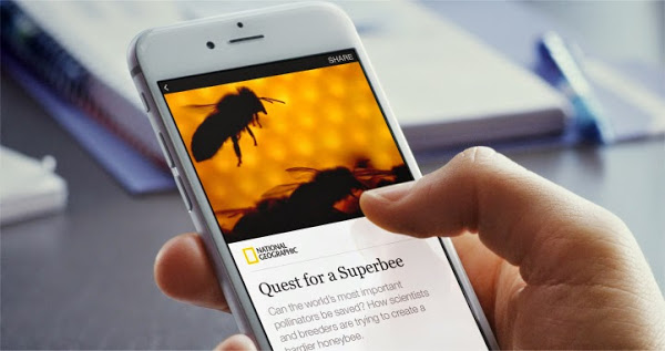 instant articles from faceboo