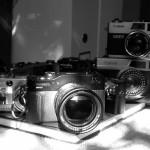 flickr mliu92