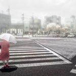 超高齡化的日本,老年人不開車也成經濟隱憂