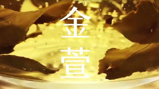ginxuang-tea-leaf