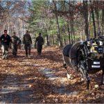 機器大狗「AlphaDog」太吵,美國海軍陸戰隊放棄採用