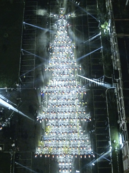 Gogoro Christmas tree