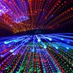 日亞化學在美控告億光專利侵權勝訴,億光:非最終判決