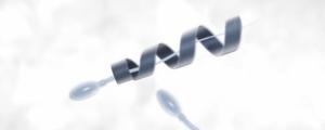spermatozoon_leiphone0202