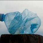 最新發現!科學家找到能分解塑膠的細菌