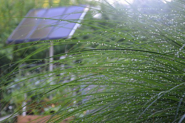 solar panel rain