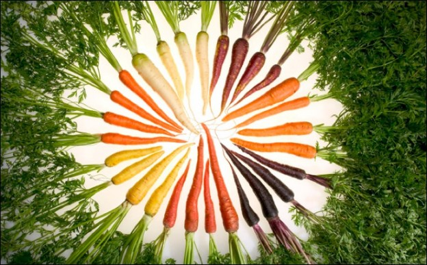 Carrot-color-arrangement
