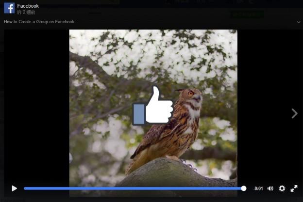 Facebook-video-group