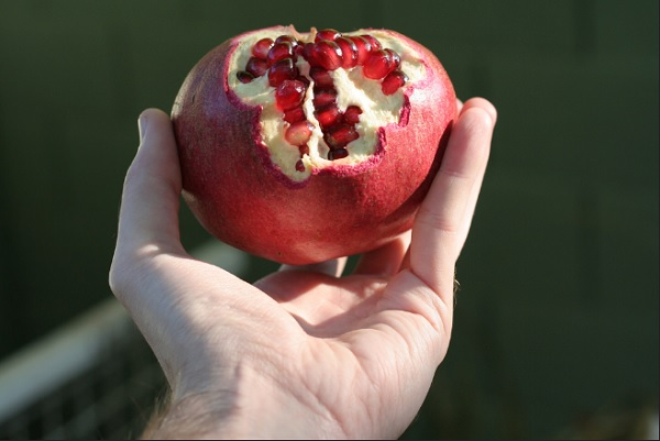 吃它真的能抗老化?瑞士學者揭開石榴的神秘面紗