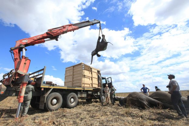 下載自美聯社