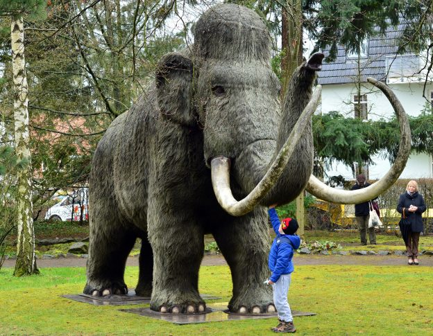 下載自美聯社 A crane carries the replica of a mammoth to the park at the Kunsthaus Meyenburg in Nordhausen, Germany, 30 March 2016. The large Nordbrand-Nordhausen mammoth figure was previously displayed on a traffic island in the city but needed to be removed after vandalism. The spirits manufacturer Nordbrand Nordhausen had been using the mammoth as a promotional object for many years. Photo by: Martin Schutt/picture-alliance/dpa/AP Images