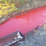 血流成河?俄國河流疑遭化學物嚴重污染變血紅色