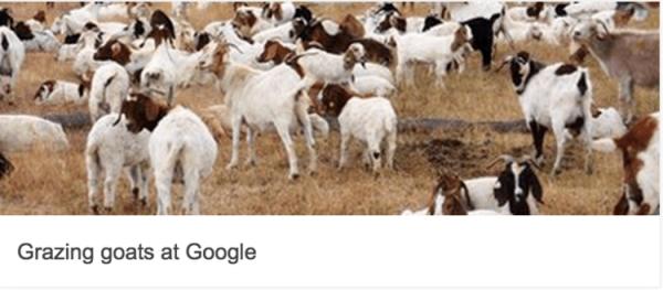 google-18-birthday 28