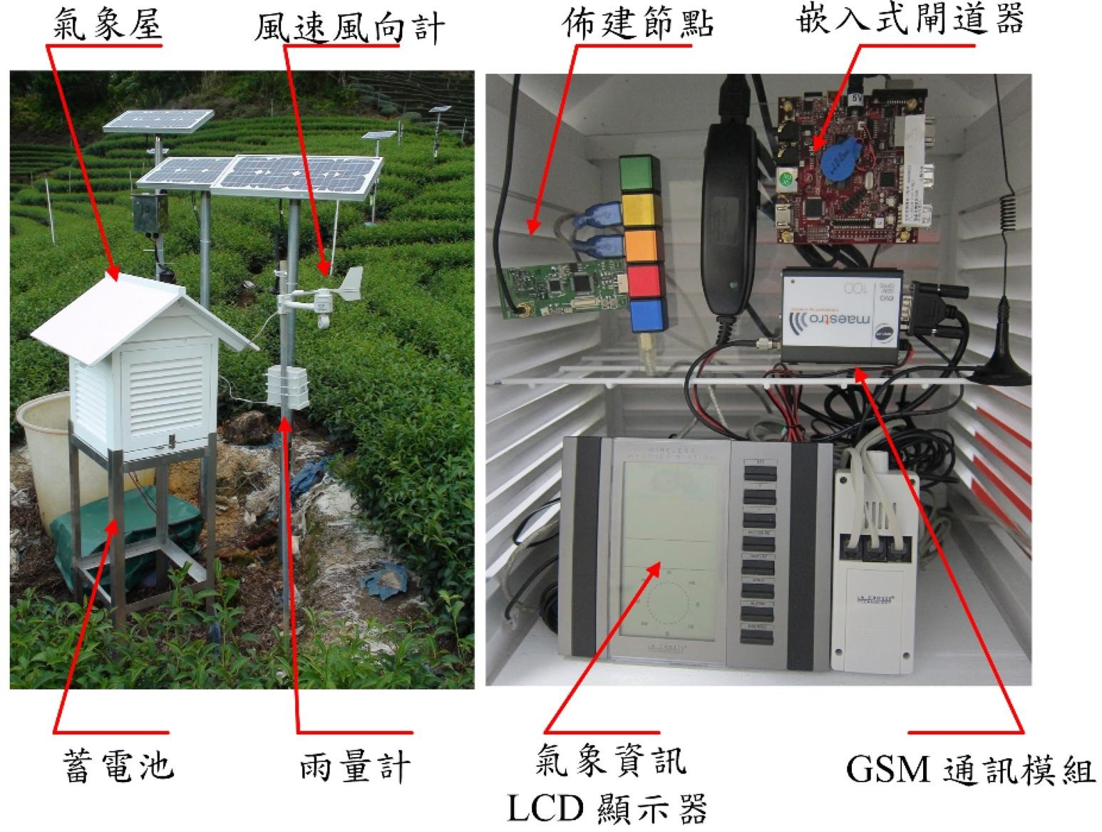 Pest monitoring system