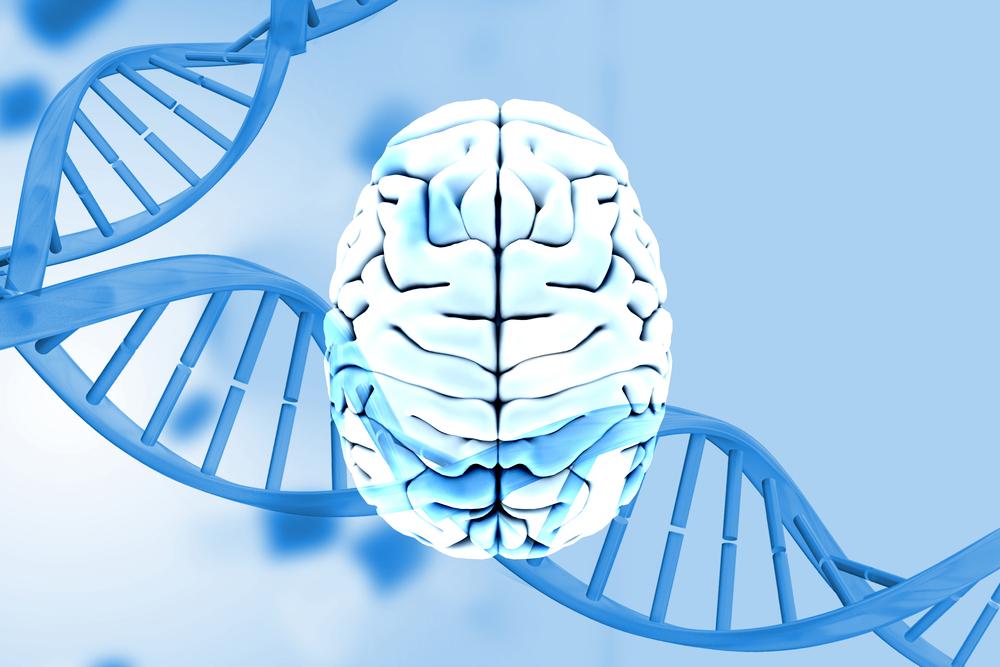 研究:基因變異作怪,腦部老化加快