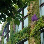 人人都能當巴黎公共空間的園丁,巴黎政府要讓所有居民來綠化花都