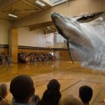 Magic Leap fb