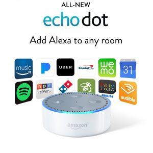 0106-Echo dot