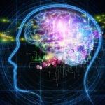 IT 產業首個人工智慧發展原則出爐
