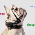 No More woof 耳機,讓小狗直接與你對話
