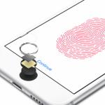 iPhone 6 跟 Apple Watch 救不回?蘋果藍寶石供應商 GTAT 提交破產保護申請