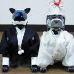 Sony 停止機器狗維修,日本飼主心慌慌